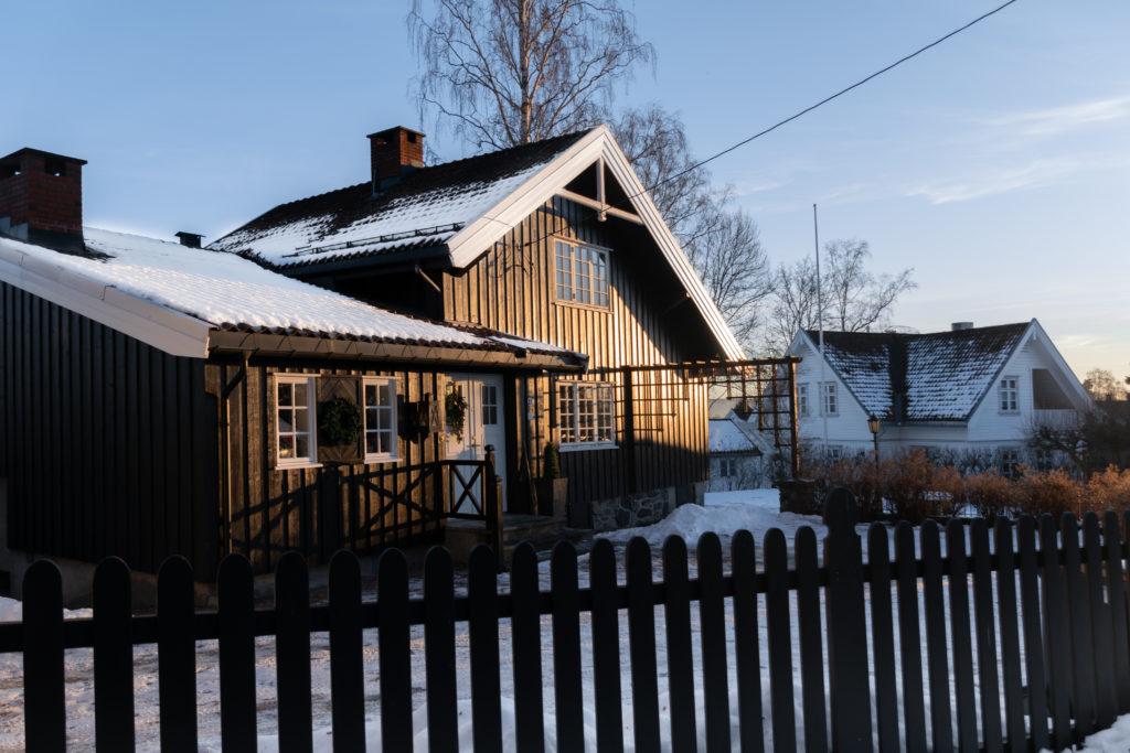 DSC 0940 1024x683 - Oslo en solo