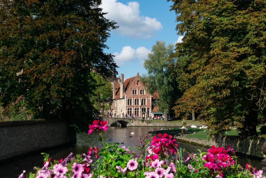 DSC 0863 1024x683 - La Belle Bruges