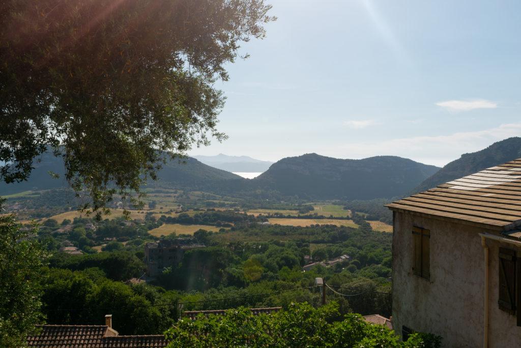 patrimonio bastia road trip voyage vin vignoble