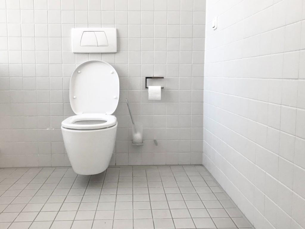 musee des toilettes wc new delhi inde india dehli museum of toilets